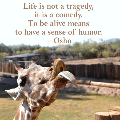 Life is not a tragedy
