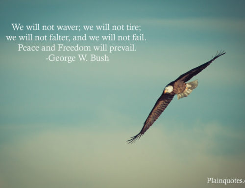 We will not waver; we will not tire; we will not falter, and we will not fail. Peace and Freedom will prevail. -George W. Bush