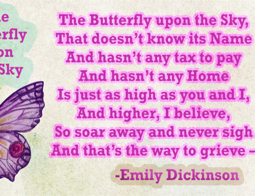 The Butterfly upon the Sky