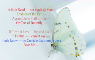 A little Road – not made of Man