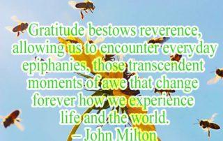 Gratitude bestows reverence