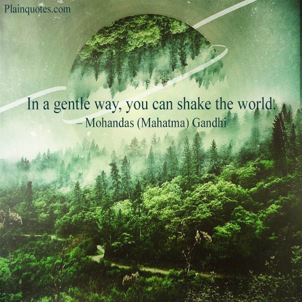 In a gentle way, you can shake