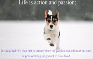 Life Is Action And Passion