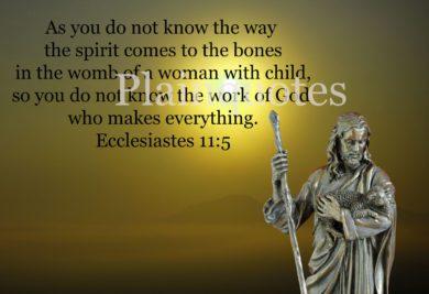 Ecclesiastes11:5 sample image