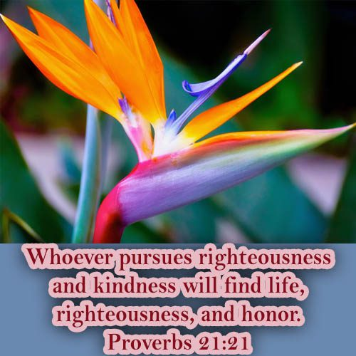 whoever pursues righteousness