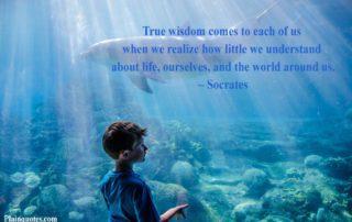 True Wisdom Comes To Each Of Us