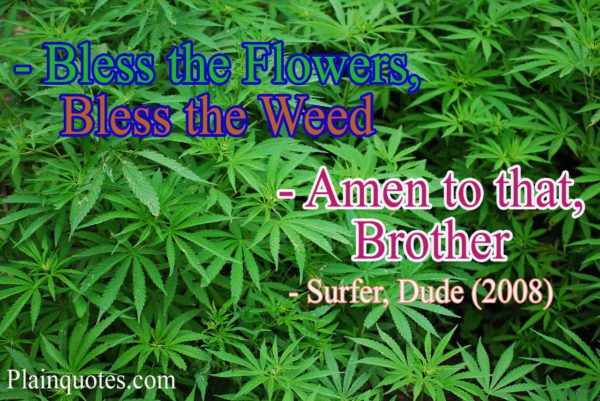 bless the flowers quote
