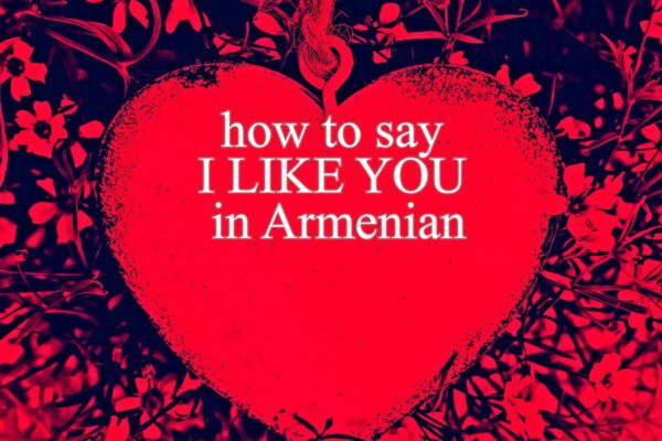 i like you in armenian