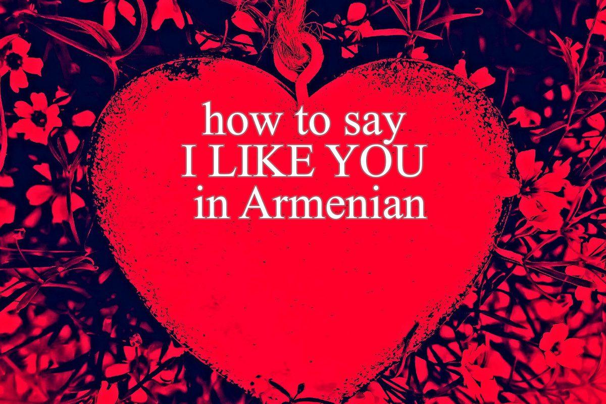 i like you in armenian