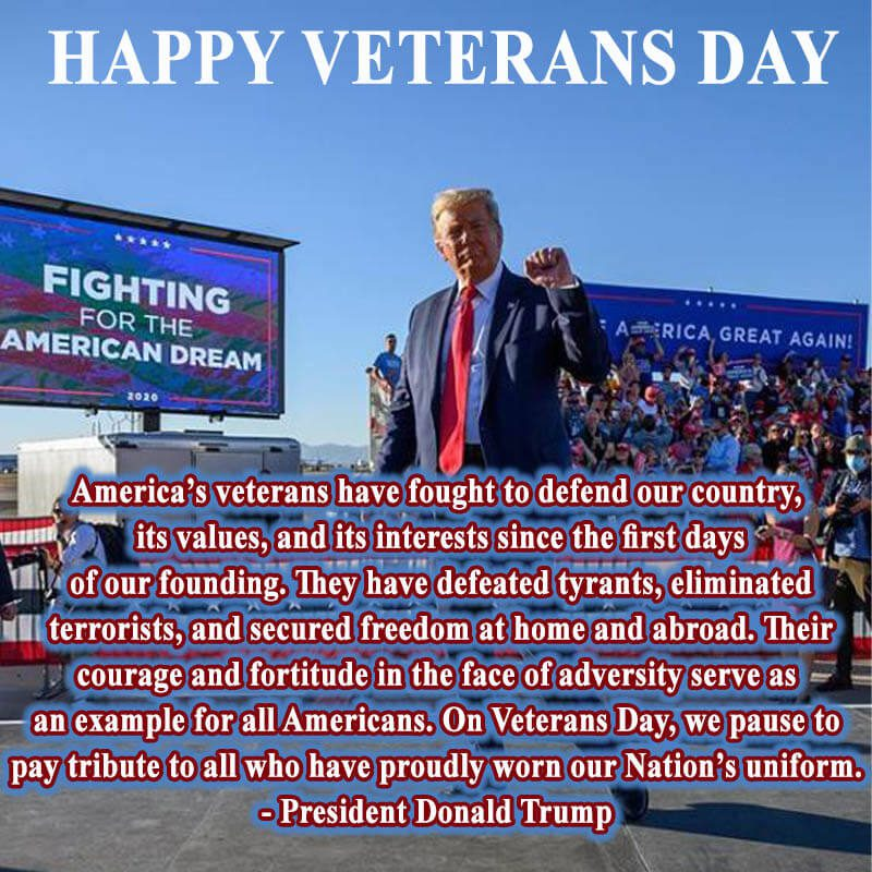 Happy Veterans Day 2020