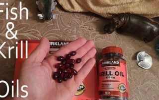 fish and krill oils